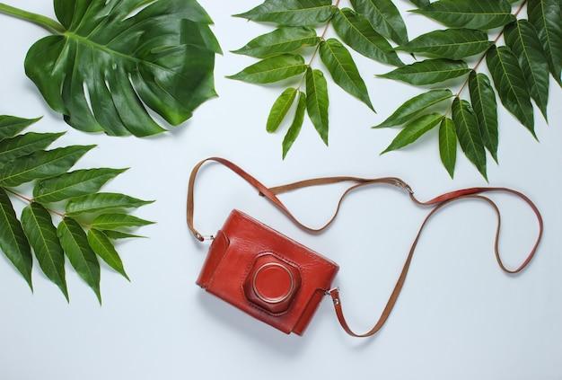 Retro camera in een leren tas met een riem tussen groene tropische bladeren op een witte achtergrond. bovenaanzicht