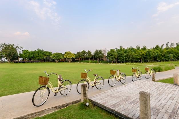 Retro rijfietsen die op straat in groen park parkeren