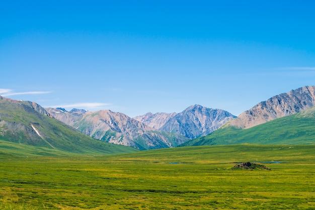 Reuzenbergen met sneeuw boven groene vallei onder duidelijke blauwe hemel.