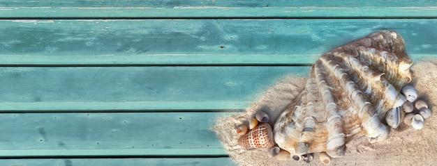 Reuzenschelp en andere kleine schelpen op het zand in de rechterhoek en lege ruimte aan de linkerkant van de blauw geverfde plank
