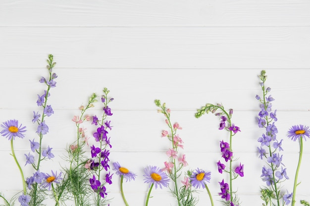 Ridderspoorbloemen op wit bord