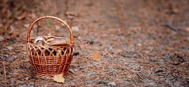 Rieten mand vol eetbare paddestoelen staande op de grond in de herfst bos. ruimte voor tekst