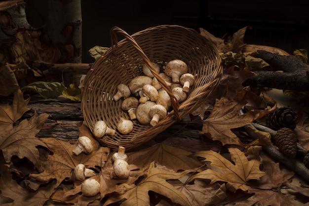 Rieten mand vol paddenstoelen die op het mos in het bos staan
