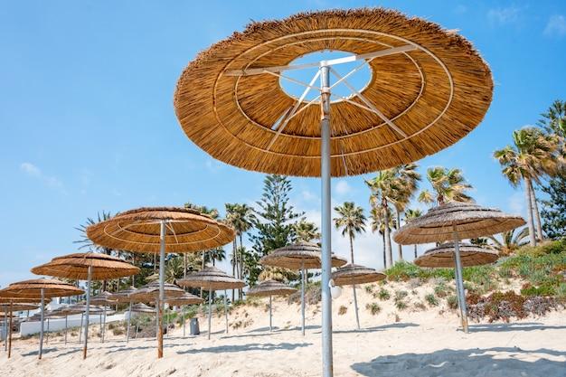 Rietparasols, parasols tegen blauwe hemel op het strand.