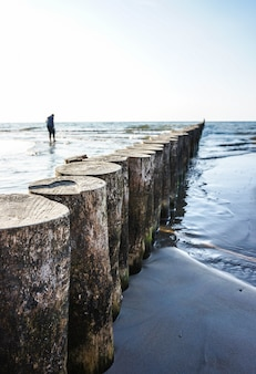 Rij houten stammen op het strand van sianozety, polen