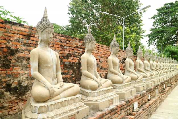 Rij van de boeddha beelden in wat yai chai mongkhon tempel, ayutthaya, thailand