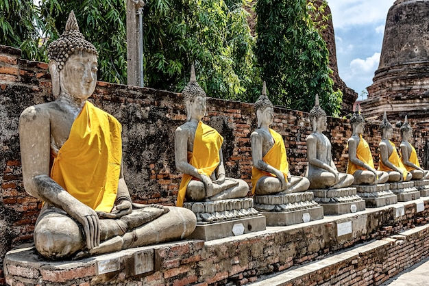 Rij van oude boeddhabeelden bedekt met gele doek