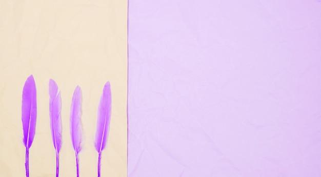 Rij van paarse veren op dubbele achtergrond