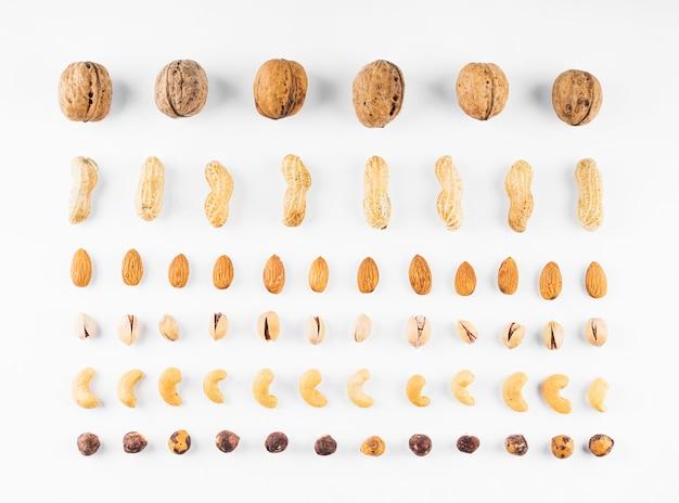 Rij van walnoten; pinda's; amandelen; pistachenoten; hazelnoot en cashewnoten op witte achtergrond