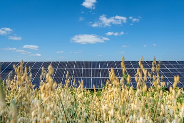 Rij zonnepanelen op een zonneboerderij onder een blauwe lucht in het veld