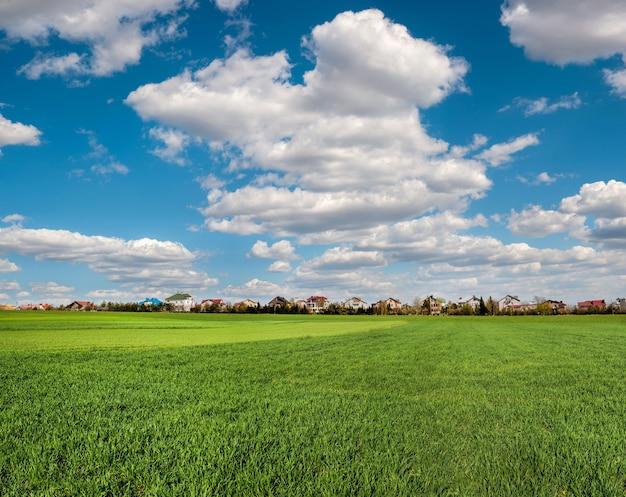 Rijen van jonge bladeren van wintertarwe en het dorp aan de horizonhemel in de wolken