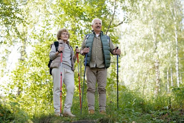 Rijpe actieve man en vrouw met wandelstokken die zich tussen groene bomen in het bos bevinden tijdens het wandelen