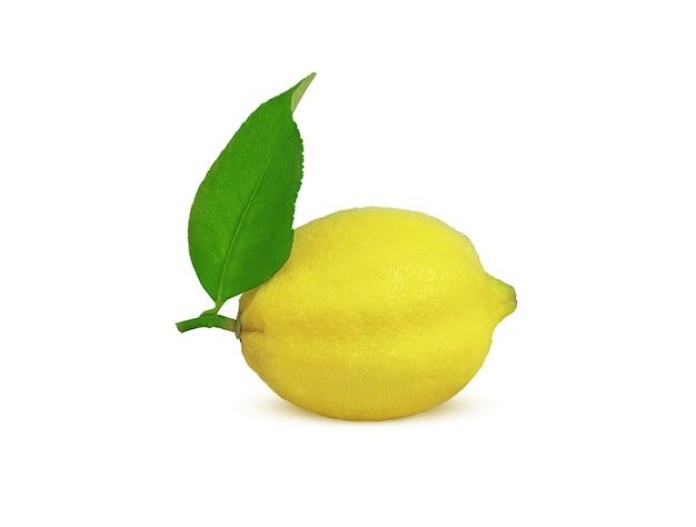 Rijpe citroen op een tak