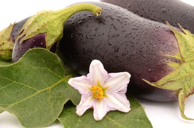 Rijpe en gezonde aubergine geïsoleerd op een witte ondergrond