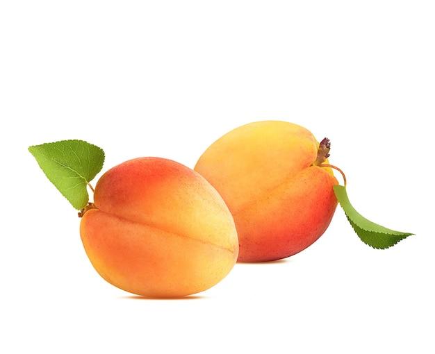Rijpe en sappige abrikozen met groene bladeren