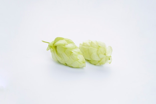 Rijpe groene hop
