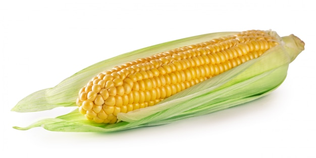 Rijpe maïs in bladeren