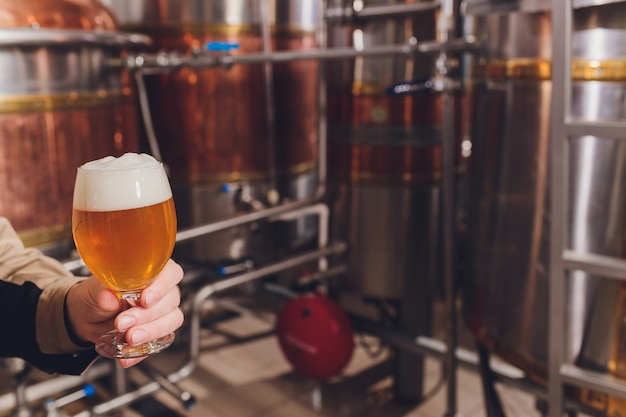Rijpe mens die de kwaliteit van ambachtbier onderzoekt bij brouwerij. inspecteur die bij alcohol productiefabriek werkt die bier controleert. mens die in distilleerderij kwaliteitscontrole van bier van het vat controleert.