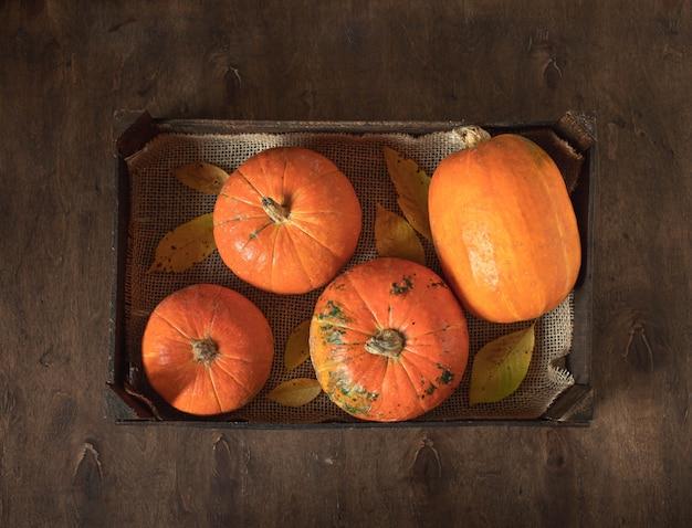 Rijpe oranje pompoenen in een houten doos op een donkere achtergrond