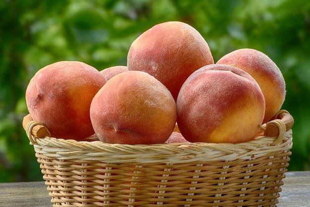 Rijpe perziken in een rieten mand, groene tuin op de achtergrond. detailopname. fruitseizoen