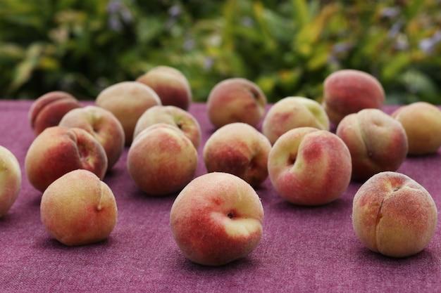 Rijpe perziken worden verspreid over een tafel bedekt met een tafelkleed op een tafel in de tuin, horizontaal formaat
