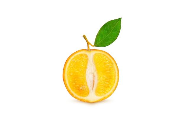 Rijpe sinaasappel op een tak op een witte achtergrond