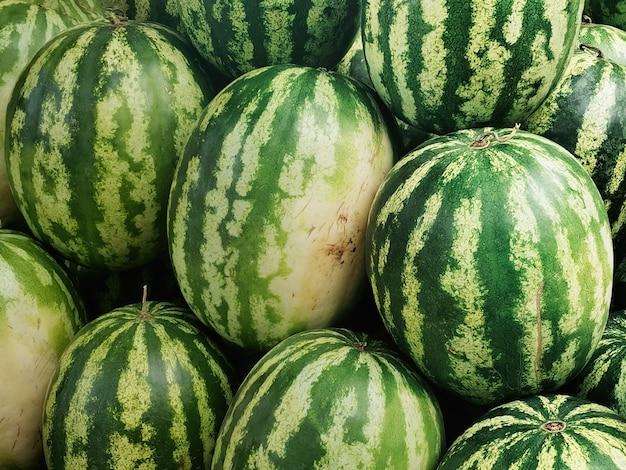Rijpe watermeloenen buitenshuis, herfstoogst van fruit en bessen.