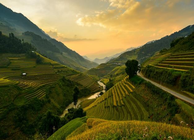 Rijstterras aan tijdens zonsondergang, vietnam, vietnam rijstterras, rijstveld van vietnam, terras rijstveld, mu chang chai rijstveld