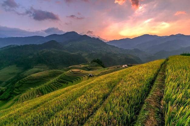 Rijstterrassen bij prachtige zonsondergang