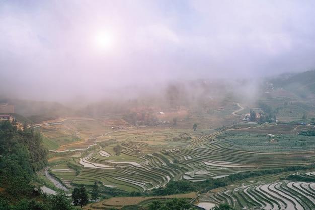 Rijstterrassen en heuvels in sapa, vietnam.