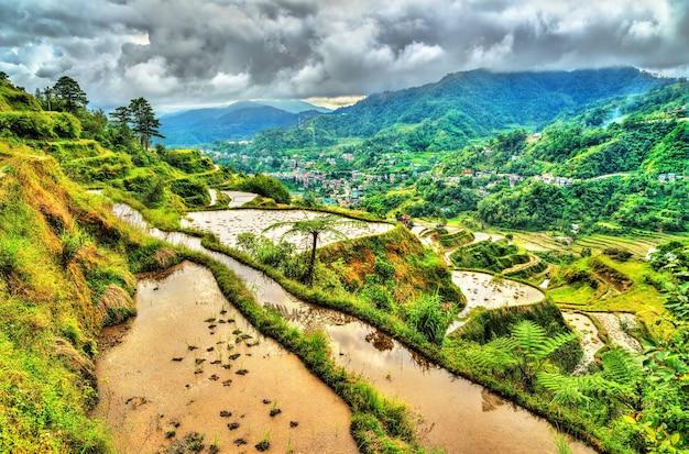 Rijstterrassen van banaue - in het noorden van luzon, in de filippijnen.
