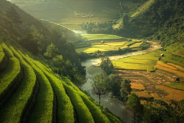 Rijstvelden mu cang chai, vietnam