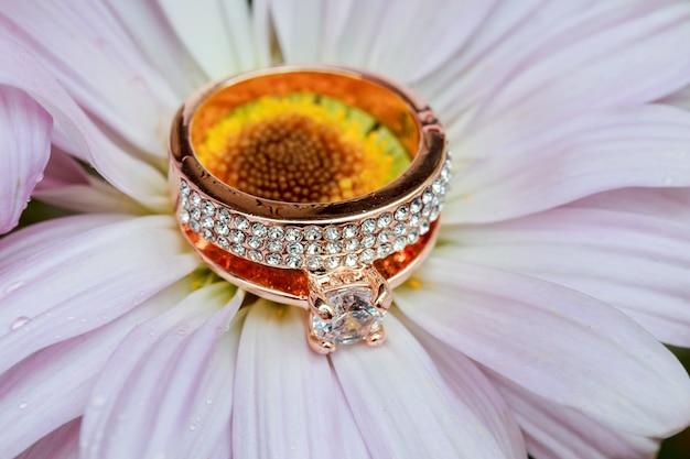 Ringen op margriet houden van valentijnsdag van witte gerbera en gouden trouwringen