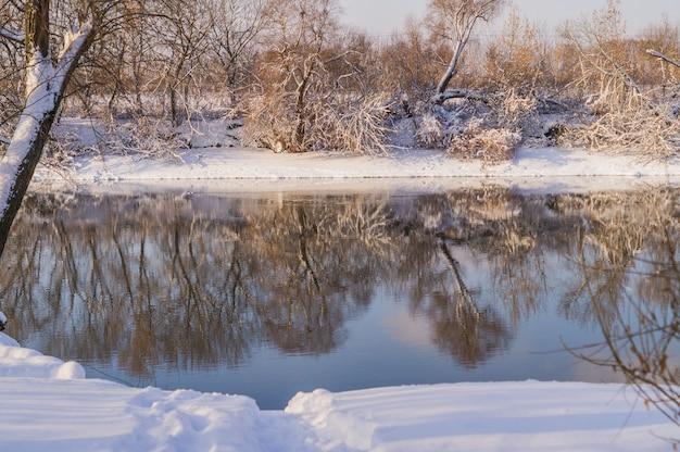 Rive en bomen, bedekt met sneeuw, zonnige winterdag.