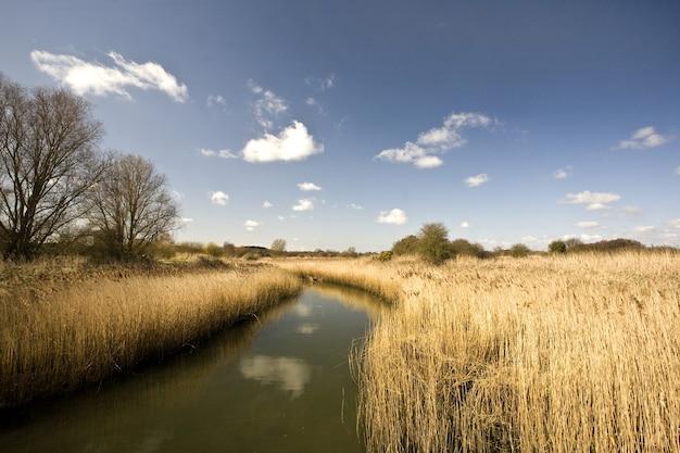 River alde omgeven door velden onder het zonlicht en een blauwe lucht in het vk