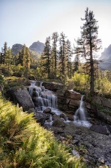 Rivier die door de herfst kleurrijk bos vloeit. mooie herfst rivier met rotsen en bomen