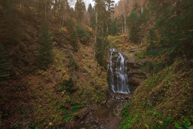 Rivier diep in bergbos. natuur samenstelling. mendelich rivier in de noordelijke kaukasus, rosa khutor, rusland, sochi. prachtige trapsgewijze waterval in het herfstbos, mist en regen.