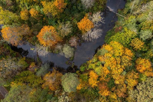 Rivier met kleurrijke herfst rivieroevers top-down weergave, abstracte herfst achtergrond