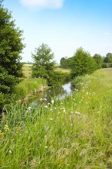 Rivier op het platteland in de lente