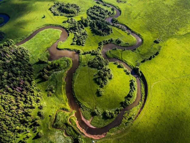 Rivier tussen het groene bos dat in de zomer vanuit een drone is neergeschoten
