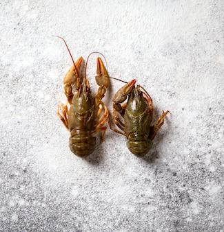 Rivierkreeft rauw, babyzeekreeft. het voedsel van de zomer. seafood.