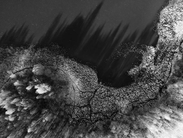 Rivieroever, bosmeer, luchtfoto van rivier en bomen. donkere boomschaduwen op water, bovenaanzicht. pittoresk luchtlandschap op zonnige zomerdag, vlak terrein. europese natuur, zwart-wit beeld