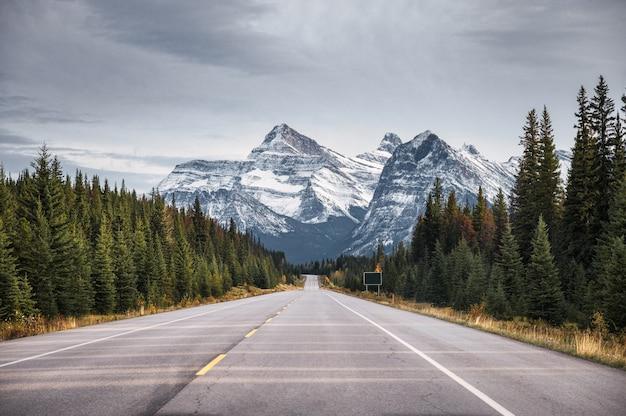 Road trip van highway met rotsachtige bergen in herfst bos op nationaal park