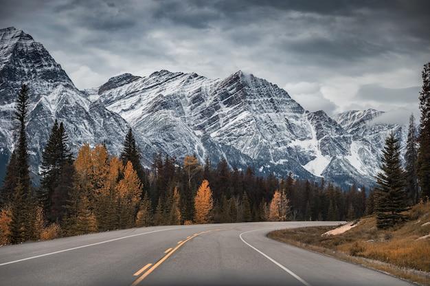 Roadtrip met rotsachtige bergen en herfstbos in nationaal park banff bij icefields parkway, canada
