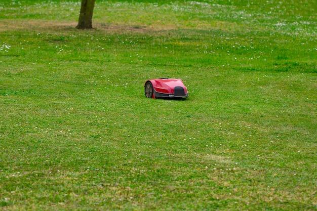 Robot grasmaaier op zomerweide in de tuin met kopieerruimte.