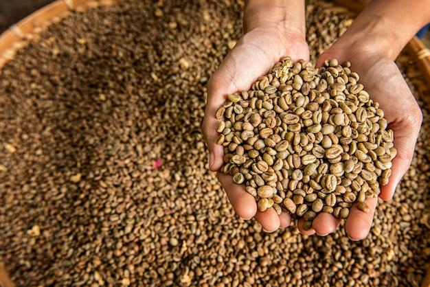 Robusta, arabica koffiebonen