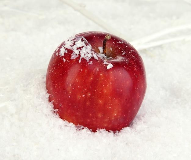 Rode appel in sneeuw