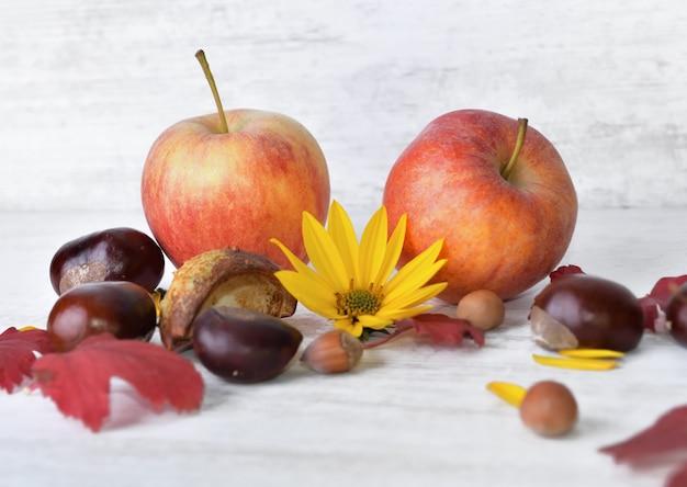 Rode appels, bruine, gele bloemen met bladeren op wit