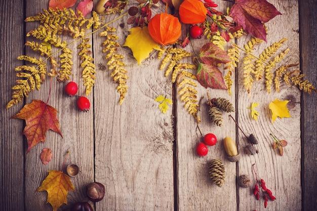 Rode berriaes en de herfstbladeren op oude houten achtergrond