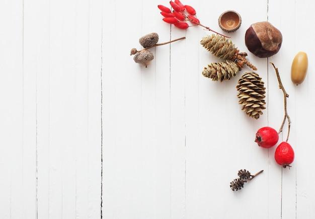 Rode berriaes en kegels op witte houten achtergrond
